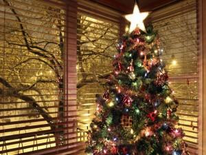 Árbol de Navidad frente a una ventana
