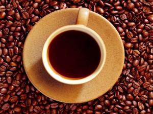 Postal: Taza sobre granos de café