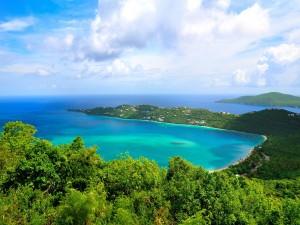 Postal: Mar azul y vegetación