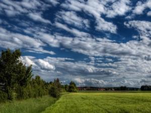 Postal: Nubes en el cielo sobre el campo verde