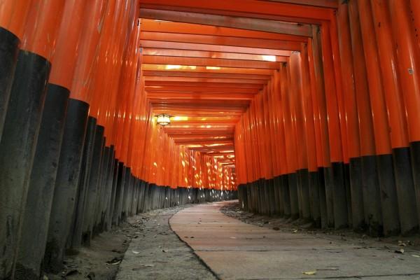 Sendero de torii en el santuario Fushimi Inari-taisha, Japón