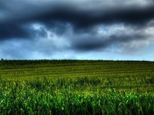 Cielo con oscuras nubes