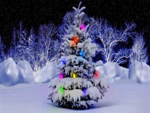 Postal: Arbolito de Navidad iluminado en la nieve