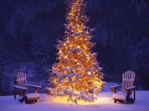 Postal: Escenario navideño