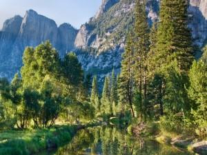 Un río en la naturaleza