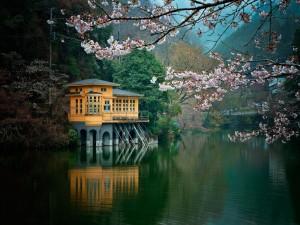 Casa a orillas del río en otoño