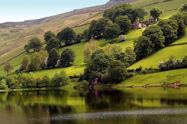 Casas en la ladera verde