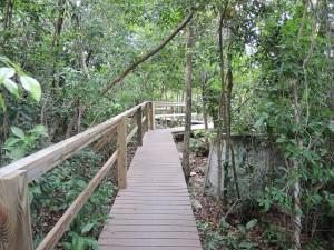 Postal: Parque Nacional de Lucaya