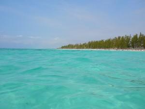 Playa Gold Rock en la isla de Gran Bahama