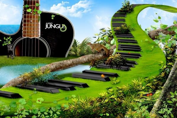 El sonido de la selva