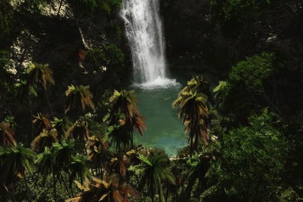 Cascada en un entorno tropical