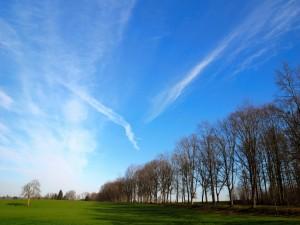 Cielo azul en invierno