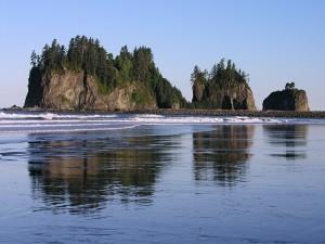 Postal: Isla con árboles cerca de la playa