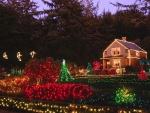Casa y jardín con luces de Navidad