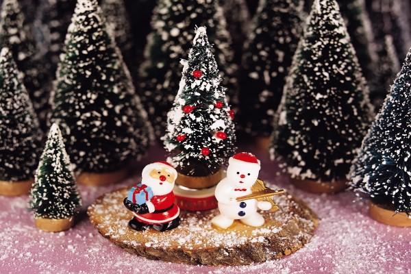 Pequeños árboles de Navidad para decorar