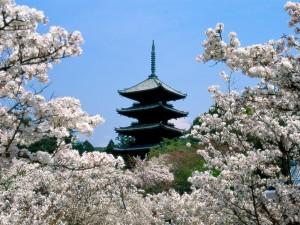 Postal: Pagoda y árboles