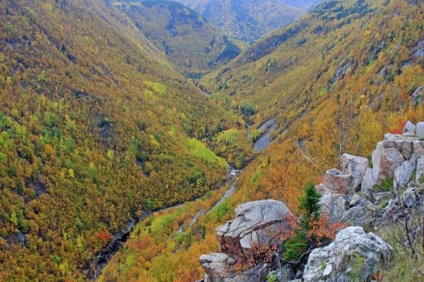 Montañas con los colores del otoño