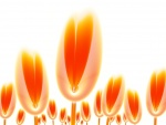 Tulipanes naranjas digitales