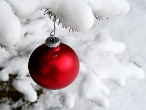 Bola roja con nieve en el árbol de Navidad