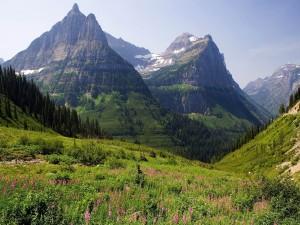Postal: El color verde de las montañas