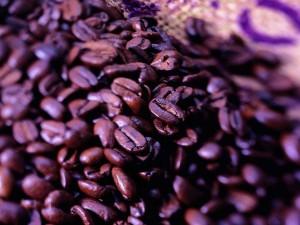 Postal: Granos tostados de café listos para moler