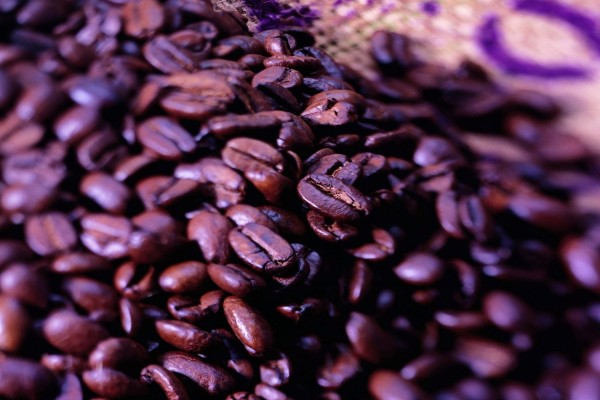 Granos tostados de café listos para moler