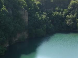 Postal: Árboles y agua verdes