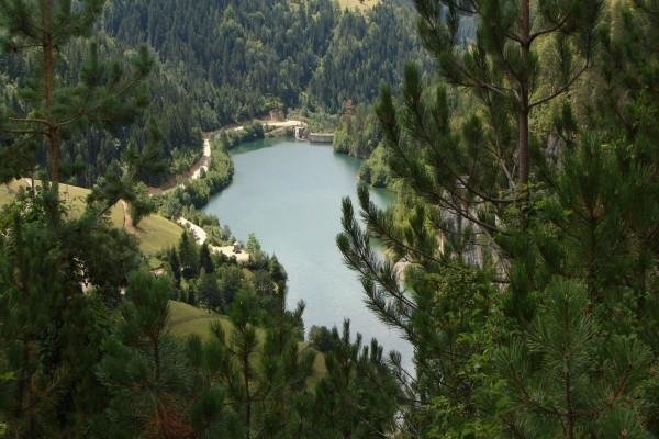 Un lago entre árboles