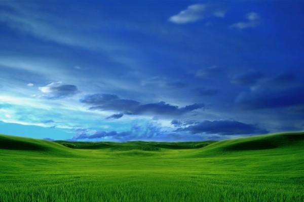 Contraste de colores verde y azul