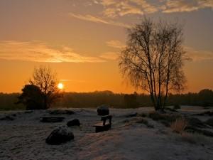 Postal: Nieve al amanecer