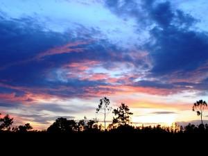 Bonito color del cielo con nubes