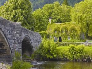 Puente de piedra en la casa verde