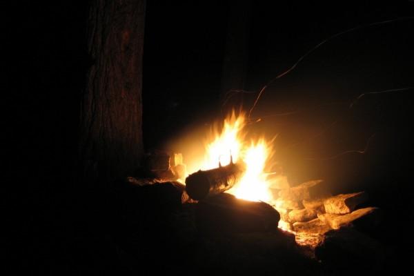 Leña en el fuego