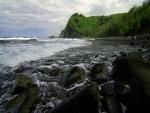 Playa con piedras y árboles