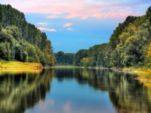 Agua en calma rodeada de naturaleza