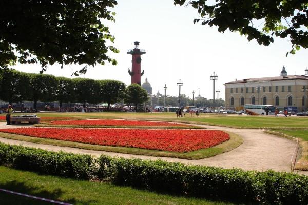 Parque con flores rojas