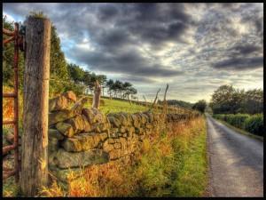 Postal: Camino rural