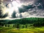 Los rayos del sol iluminan el camino