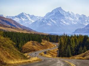 Montañas, bosque y carretera en Nueva Zelanda
