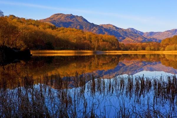 Lago rodeado de árboles y montañas marrones