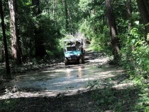 Por un sendero fangoso