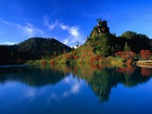Postal: Colores rojos y verdes en la vegetación del lago