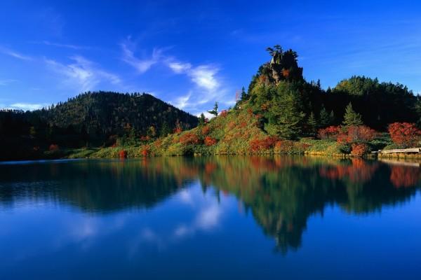Colores rojos y verdes en la vegetación del lago