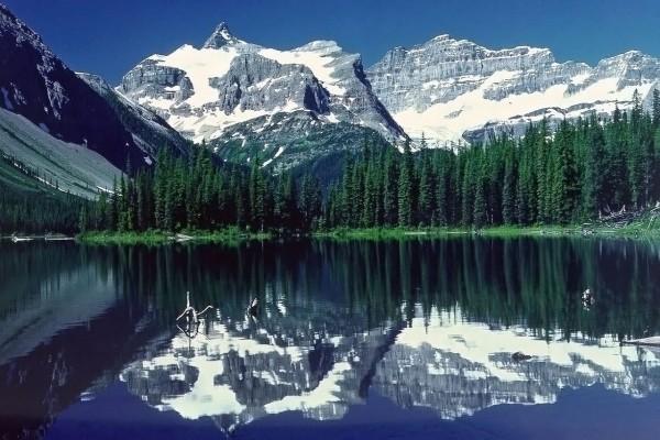 Montañas con nieve, pinos y el lago