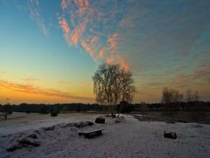 Algo de nieve al amanecer