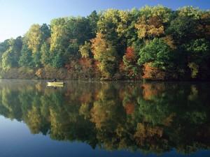Postal: Barca en el lago durante el otoño