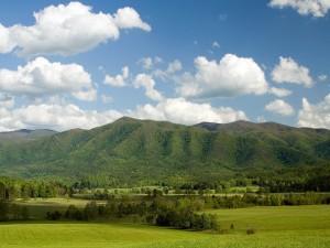 Cielo azul y tierra verde