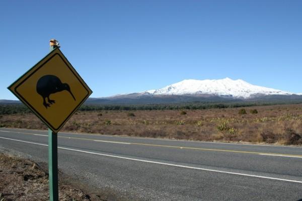 Señal de advertencia, Kiwis en la carretera (Nueva Zelanda)