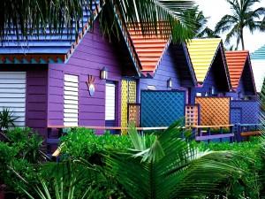 Postal: Casitas de colores y palmeras