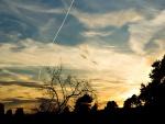 Una larga línea blanca en el cielo